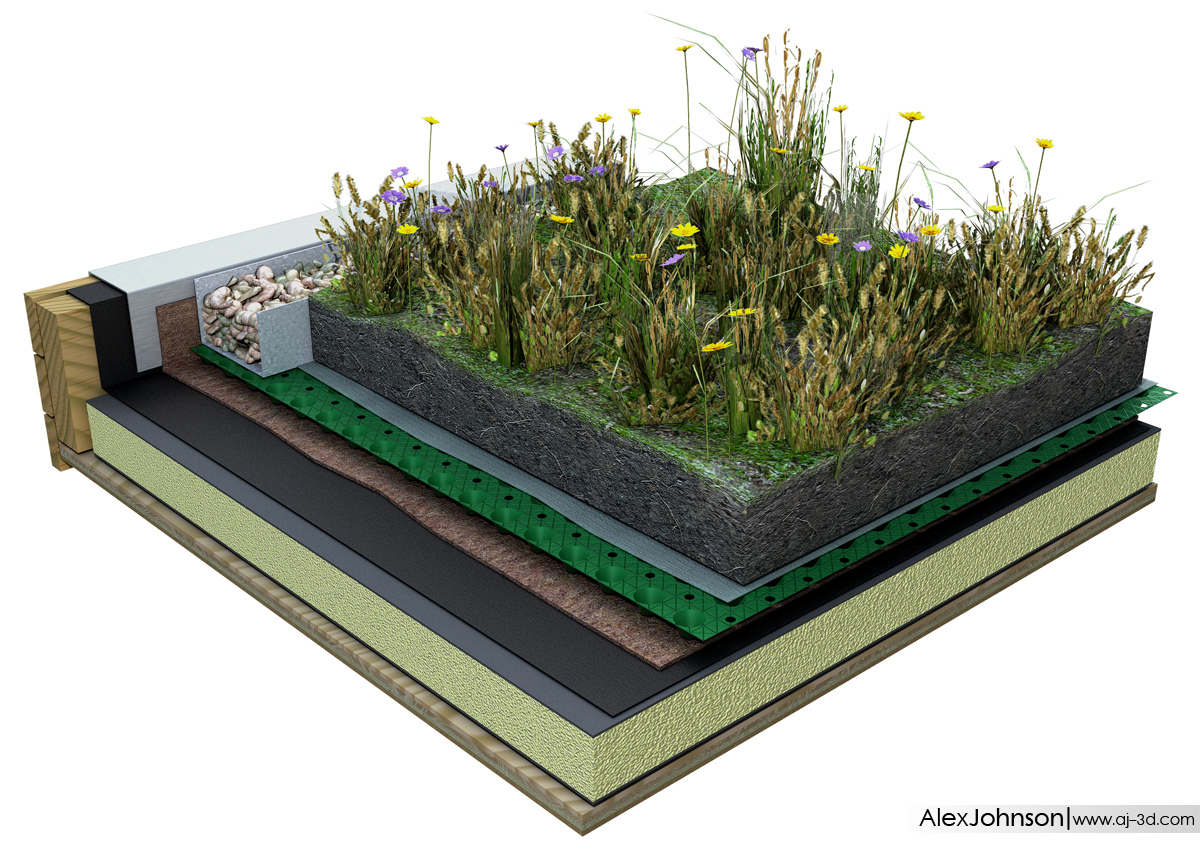Alex Johnson Gallery Green Roof Diagram